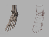 Joints Study 1