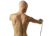 Identifiying the Shoulder Muscles 7
