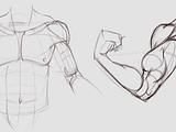 Biceps Assignment4