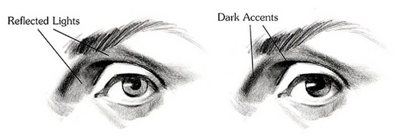 drawing the eye full calues and dark accents