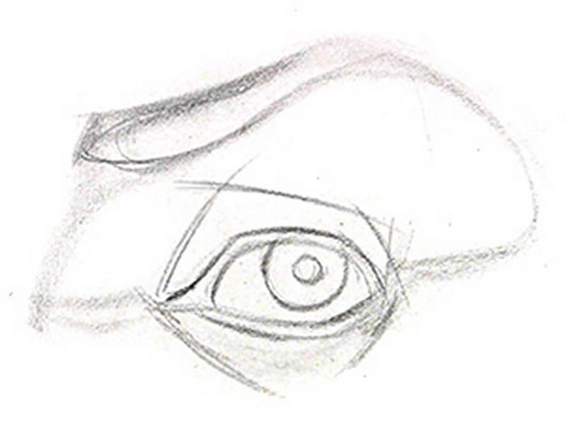 drawing the eye layin